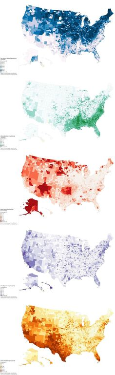 This might be a good time to check out the USA's population distributed by ethnicity.