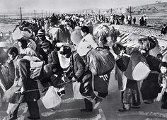 Korean refugees in Pusan