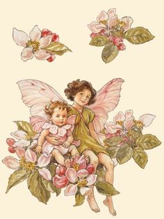 Cecily Mary Barker- Flower Fairies, I always loved these!