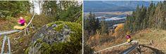 The Pipe Mountain Coaster|         Revelstoke Mountain Resort|British Columbia, Canada