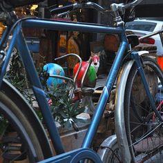 bisiklet bisikletsevenler bisiklethayattr bisikletim blog blogger bicycle bicycles bicyclelife bicycleworldhellip