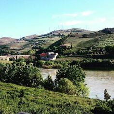 #Douro #pesodaregua #regua #dourovinhateiro #dourovinhateiro #portugal_em_fotos #portugalemperspectiva #portugaldenorteasul by pedro__matias