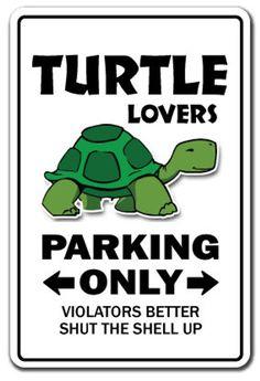 Cute Turtles, Sea Turtles, Baby Turtles, Ocean Aquarium, Turtle Time, Turtle Pond, Tortoise Turtle, Baby Tortoise, Tortoise Habitat