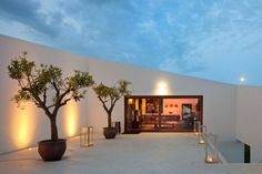 Dachterrasse Betonhaus exotische Bäume-Wandleuchten Design.... Noch eingemauerter...!