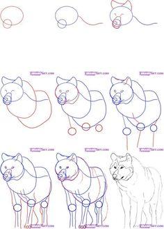 Comment dessiner un loup 3360
