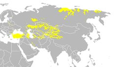 Distribution of the Turkic languages across Eurasia