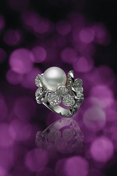リング/ WGK18製、白蝶真珠、ダイアモンド
