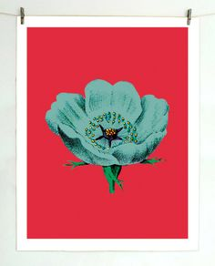 Illustrated Poppy Print | BRIKA - A Well-Crafted Life