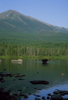 Breath taking - been past it and went to it finally :) Mt. Katahdin - Moose; Maine