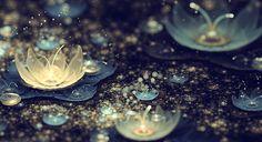 Silvermist nightlight the lily flower
