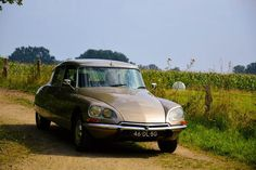 Citroën DS 20 Pallas - 1974 Citroen Ds, Fiat, Hot Wheels, Classic Cars, Automobile, French, Vehicles, Interior, Image