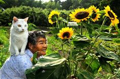 Misao lives a rural life outside the city in Japan. One day, she found a stray cat, took her in, and named her Fukumaru. They have been inseparable ever since, and the photos are beyond heart-warming.