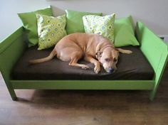Big Dog Daybed from Small Person Bed   THRIFT AESTHETIC