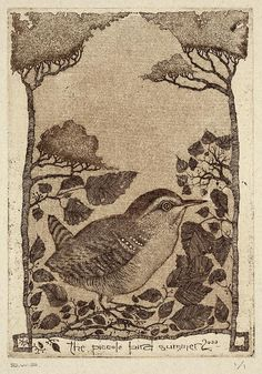 Abigail Woods Anderson(American) The Piccolo Bird 2002 Intaglio print: hard and soft ground etching, aquatint