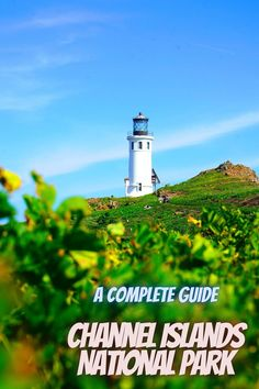 Here is a guide to Channel Islands National Park. US national parks   best national parks USA   national park vacation   national parks trip #ChannelIslandsNationalPark #USAnationalparks #nationalparks Best National Parks Usa, National Park Camping, Channel Islands National Park, State Parks, Vacation, Travel, Vacations, Viajes, Destinations