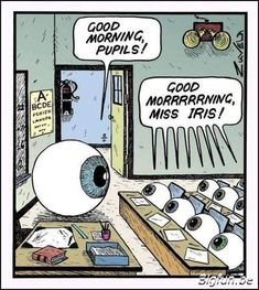 Pediatric and Adult Eye Care & Optical Services Funny Puns, Funny Cartoons, Funny Stuff, Cartoon Humor, Funny Things, Funny New, Hilarious Memes, Funny Comics, Funny Videos