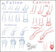 How I do paws -tutorial- by *NinjaKato on deviantART