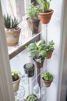 Natural Home Decor, Diy Home Decor, Plantas Indoor, Window Plants, Plant Window Shelf, Indoor Window Garden, Kitchen Window Shelves, Kitchen Windows, Shelf Wall