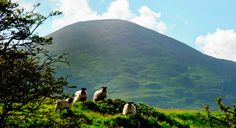 Lovely scenery from Mulranny Co Mayo Ireland Erin Go Braugh, County Mayo, Irish Landscape, Local Activities, Republic Of Ireland, Park Homes, Dublin Ireland, Countryside, Beautiful Places