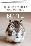 Funny Belated Birthday - Cute Bunny Butt card - Product #1539044 Belated Birthday Funny, Very Happy Birthday, Birthday Cards, Frowny Face, Monster Characters, Pink Tulips, Funny Cards, Artistic Photography, Cute Bunny