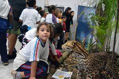 Ao completar quatro anos, o Viveiro de Plantas Educador Ambiental Leopardo Francisco da Silva – 'Seo' Leo ganhou, nesta quarta-feira (01), um minimuseu que abriga animais taxidermizados (empalhados),...
