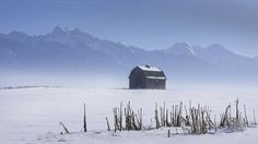 Cold Blue Morning in the Flathead Valley - #Montana #montanamoment