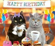 Are you looking for ideas for happy birthday best friend?Browse around this website for unique happy birthday inspiration.May the this special day bring you happy memories. Happy Birthday Animals, Funny Happy Birthday Wishes, Happy Birthday Quotes For Friends, Happy Birthday Pictures, Happy Birthday Greetings, Animal Birthday, Birthday Messages, Funny Birthday, Birthday Cats