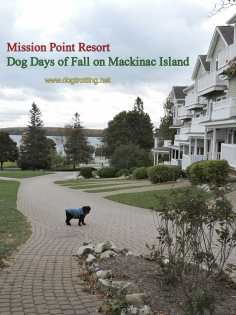 Part I Mackinac Island Michigan Car Free Dog Paradise At Mission Point Dog Vacations Mackinac Island Pet Paradise