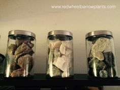 "I found these medical supply jars on Amazon to display my rock collection. The jars give my collection a ""scientific"" feel and match my home decor. I can also easily access the rocks in case I want to display them in a different way or use them for jewelry- making."