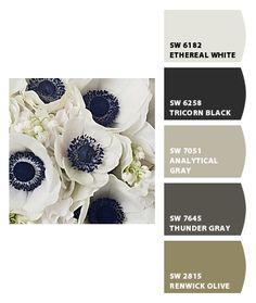 Ideas For Home Exterior Colors Navy Living Rooms Taupe Color Schemes, Black Color Palette, Exterior Color Schemes, Room Color Schemes, Colour Pallette, Exterior House Colors, Room Colors, Paint Colors, Black Color Combination