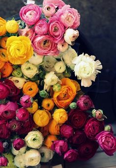 Ranunculus- all colors of the rainbow... how stunning would these look on a cake?!