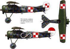 Fokker D.VIII/E.V | Poland | 7. Eskadra Lotnicza | Fokker E.V from the Polish-Ukrainian war of 1919-1920