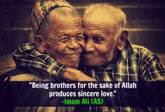 Being brothers for the sake of Allah produces sincere love. -Hazrat Ali (AS)