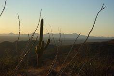 Overlooking the Tucson, AZ valley