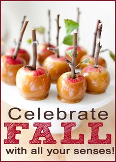 Celebrate Fall with all your senses #fall #family_ideas