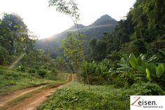 Feldstrasse in Thailand Thailand, Country Roads, Tour Operator, Travel