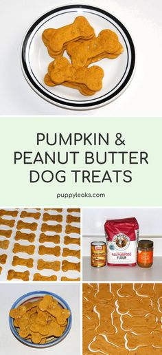 Pumpkin & Peanut Butter Dog Treats - Looking for a simple dog treat recipe? Check out these homemade pumpkin & peanut butter dog treats. Homemade Dog Cookies, Homemade Dog Food, Diy Dog Treats, Healthy Dog Treats, Healthy Food, Healthy Eating, Doggie Treats, Dog Snacks, Healthy Dishes