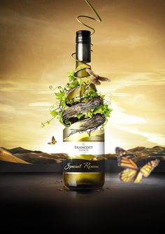 ♂ Creative product photography and package design - Exceptional by Nature. Ads Creative, Creative Posters, Creative Advertising, Creative Design, Wine Advertising, Advertising Design, Product Advertising, Wine Poster, Wine Display