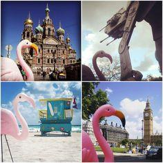 Rodrigo Flamingo - Travel mascot Travel Toys, His Travel, Future Travel, Instagram Accounts, Trip Planning, Flamingo, Flamingo Bird, Flamingos