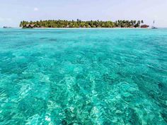 Palm Beach Resort and Spa is a 40 minute seaplane flight from Malé International Airport, features diving, fishing, wakeboarding and windsurfing, great service
