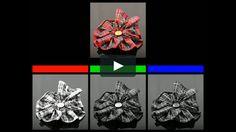 "An animated recreation of James Clerk Maxwell's ""Tartan Ribbon"" photograph, the…"