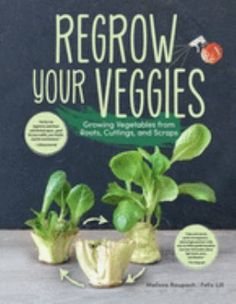 No need to keep buying the same vegetables you eat all the time over and over again. Regrow Your Veggies is an insightful guide that provides effective propagation techniques to recycle and regrow more than 20 popular vegetables right at home! Learn how to have a source of fresh and healthy vegetables close by, from onions and sweet potatoes to pineapples and mangoes, reduce waste, and know how to prevent and solve issues with pesky pests and pathogens. Healthy Vegetables, Growing Vegetables, Veggies, Urban Farmer, Reduce Waste, Lettuce, Sweet Potato, Roots, Mango