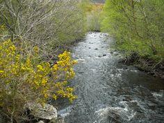 Ullapool River   27 April 2014