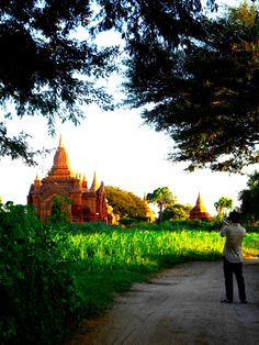Sunlight. Pagoda.