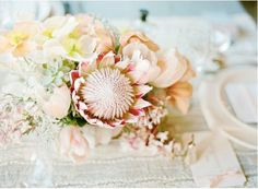 thinking of adding king protea to the centerpieces. Protea Centerpiece, Floral Centerpieces, Wedding Centerpieces, Wedding Bouquets, Flower Arrangements, Wedding Decorations, Floral Arrangement, Protea Wedding, Centrepieces