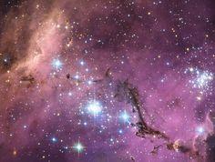 Hubble Sees Hidden Treasure in Large Magellanic Cloud | por NASA Goddard Photo and Video