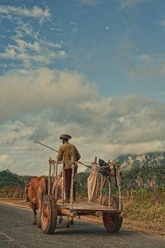 La carreta y el guajiro simbolo de Cuba