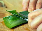 Hojivý gel z aloe a měsíčku lékařského — Recepty — Kouzelné bylinky — Česká televize Korn, Aromatherapy, Aloe, Cucumber, Herbs, Cosmetics, Herb, Zucchini, Medicinal Plants