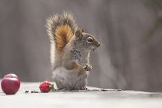 Great time by Andre Villeneuve - Photo 155350969 - 500px