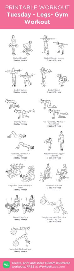 Tuesday - Leg Day Workout